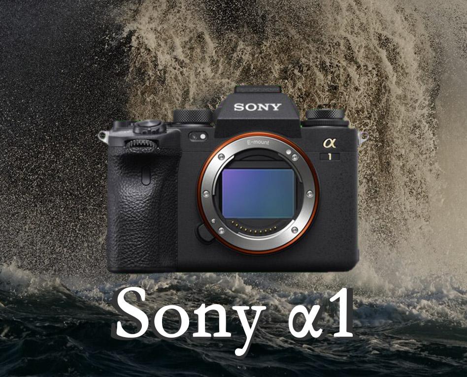 Sony α1 : Le nouveau mâle Alpha des hybrides
