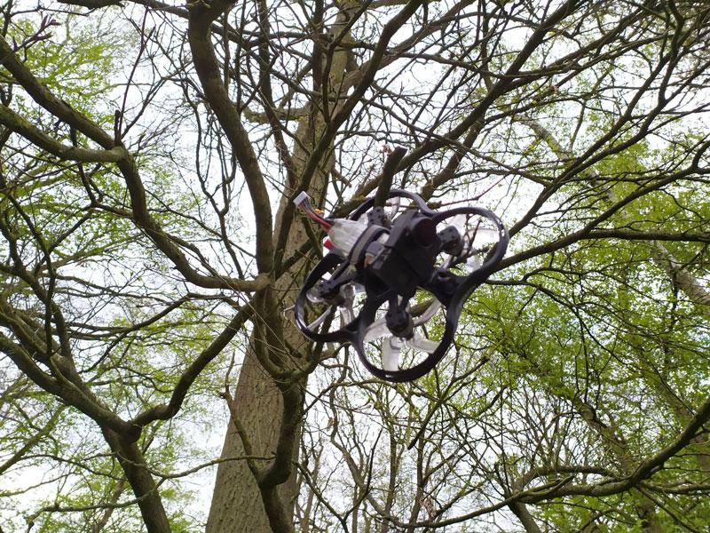 BetaFPV Pavo30 dans arbre crash